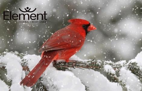 cardinal debit