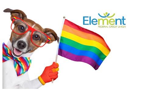 Dog waving rainbow flag debit